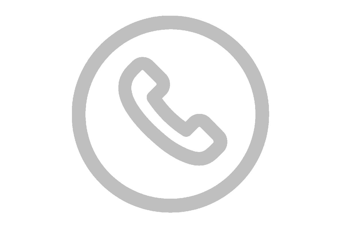 Phone icon web